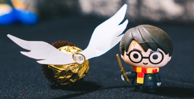 Harry Potter Party on a budget-5