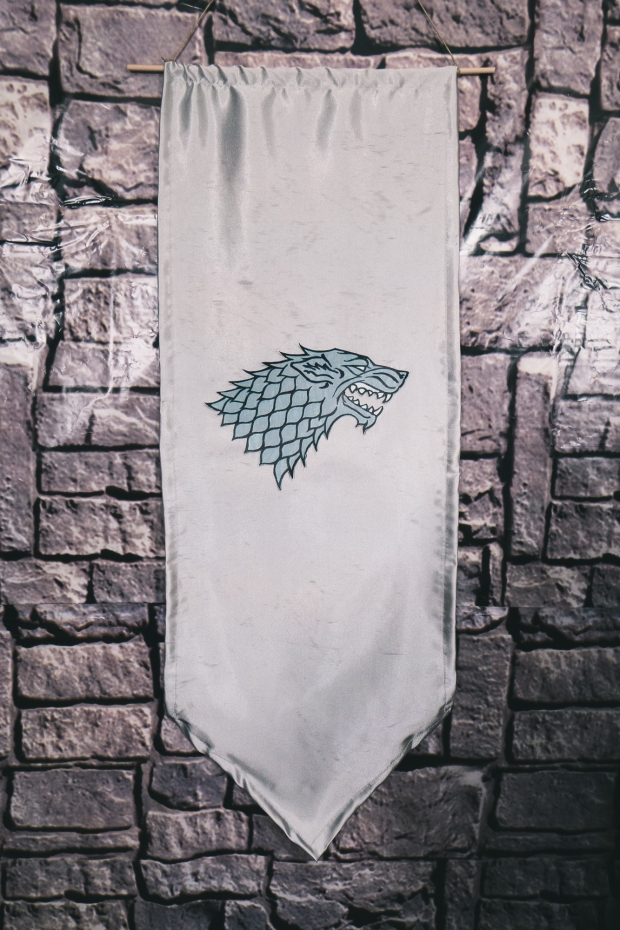 Affordable Game of Thrones Party Subculture Recall-33